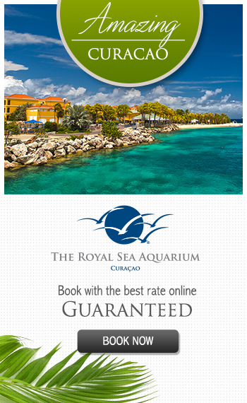 Book Now your Royal Resorts Caribbean Accommodations