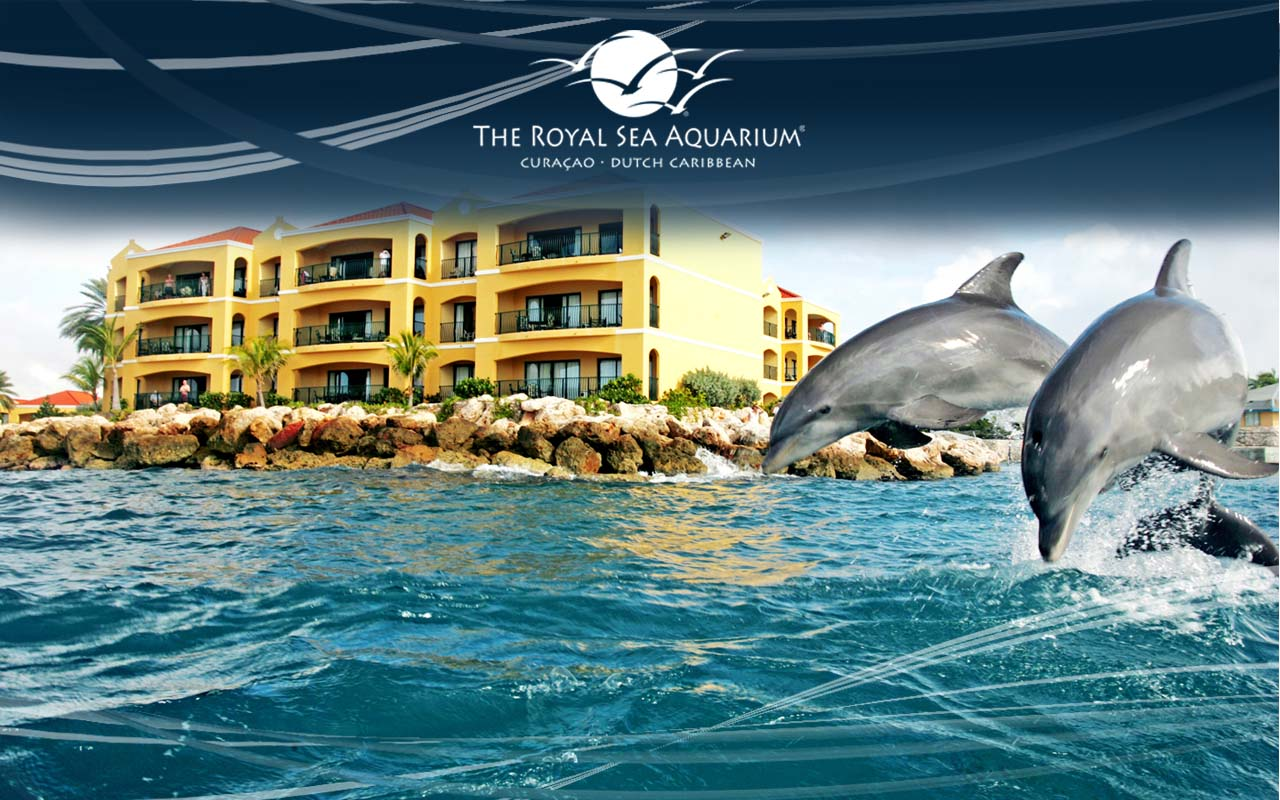 Wallpapers From Your Resort The Royal Sea Aquarium News