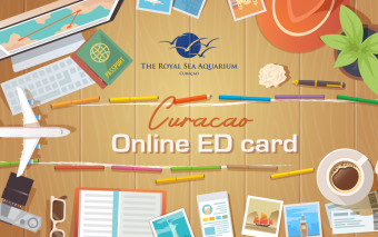 New Online Ed Card to enter Curacao